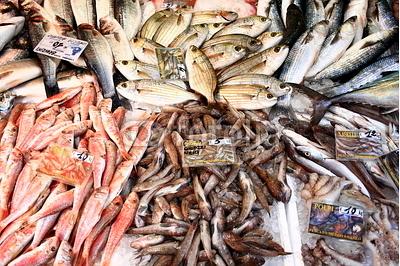 Seefisch, Meeresfrüchte, Marktstand, Fischmarkt, Genua, Italien
