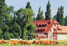 Jodan's Untermühle