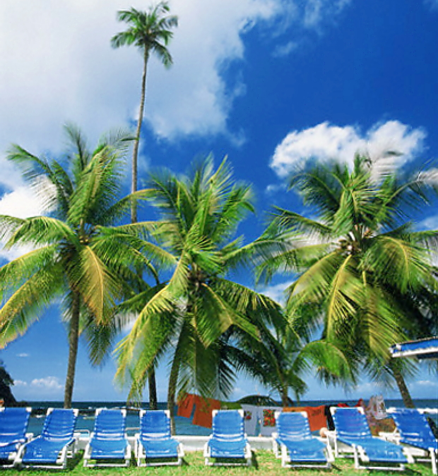 Tobago © Copyright CorbisImages karl-heinz haenel
