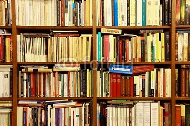 Library, Bücherregal, Bücher © Copyright by PANORAMO #19626770