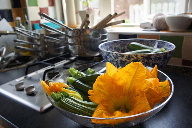 Zucchini, Blüte und Frucht © Copyright by PANORAMO BlogDSC06762