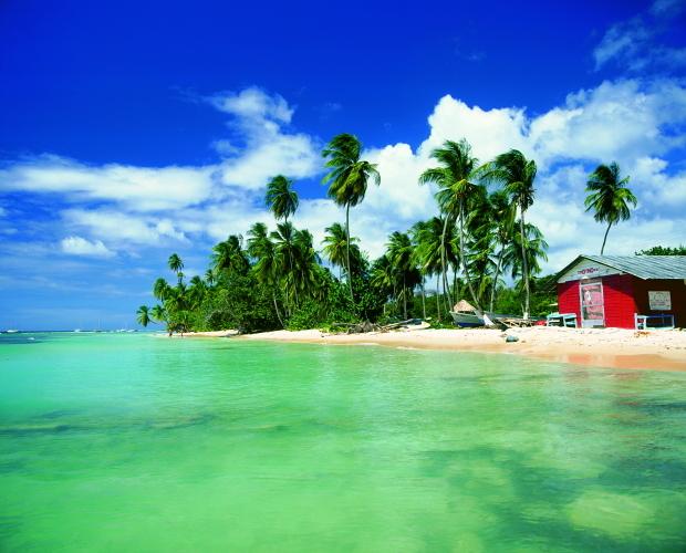 auf Tobago © Copyright by PANORAMO