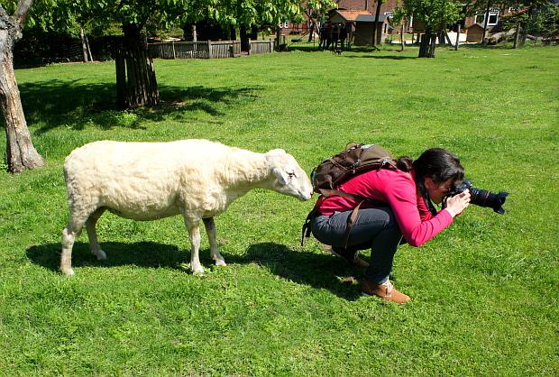 Evelyn auf der Suche ... DSC09279 Copyright by Blog.Liebhaberreisen.de