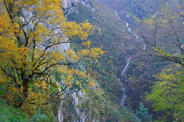 Vikos-Schlucht in den Zabori Mountains, Zagorochoria – Epirus © Copyright by PANORAMO Bild lizensieren: briefe@panoramo.de