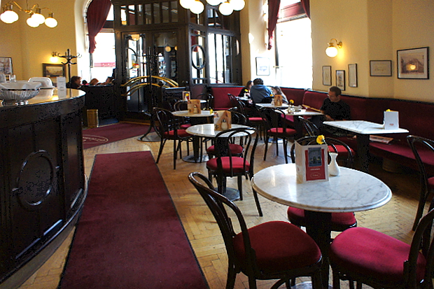 Kaffeehäuser besuchen in Wien © Copyright by PANORAMO Bild lizensieren: briefe@panoramo.de