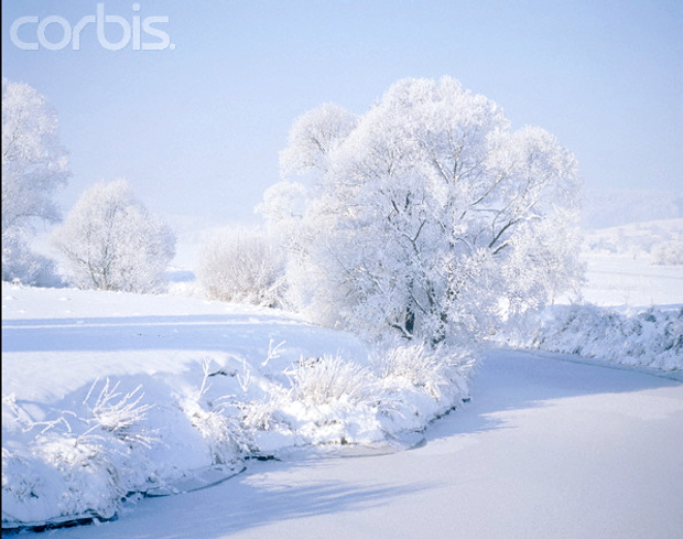 Winter in Schleswig-Holstein © Copyrights managed by Corbis Images: 42-15325461