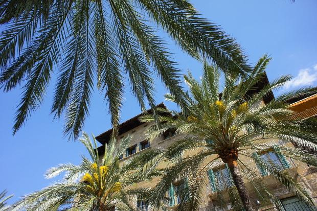 alma de Mallorca © Copyright by PANORAMO Bild lizensieren: briefe@panoramo.de