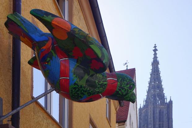 Spatzen in Ulm © Copyright by PANORAMO Bild lizensieren: briefe@panoramo.de