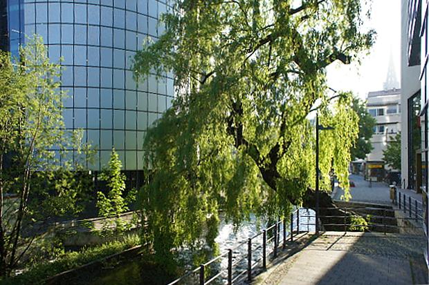 Die Blau fließt durch Ulm © Copyright by PANORAMO Bild lizensieren: briefe@panoramo.de