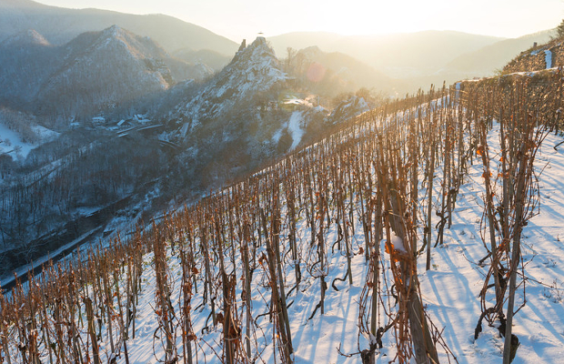 Ahr © Copyright Dominik Ketz Rheinland-Pfalz Tourismus GmbH