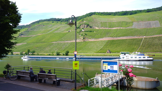 Weingut Kerpen in Wehlen an der Mosel © Copyright by PANORAMO.de
