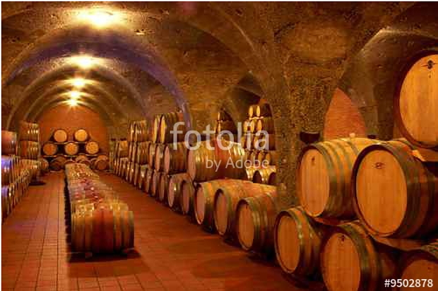 """Weinkeller, Barrique - Fässer, Gewölbe, Toskana, Italien Foto ist hier sofort für Ihre Verwendung zum download bereit ab € 3,00 <a href=""""http://de.fotolia.com/id/19908261/partner/200519431"""" title=""""http://de.fotolia.com/id/19908261"""" target=""""_blank""""> http://de.fotolia.com/id/9502878/partner/200519431</a>"""