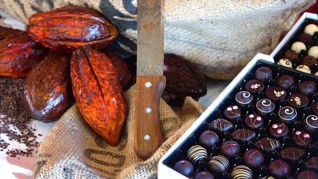 Schokoladen Workshop auf der Flora von A-Rosa 2016 © Copyright by Karl-Heinz Hänel