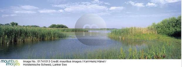 Bildnummer 01741013 © Copyright Karl-Heinz Hänel mauritius images