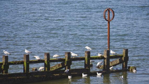 The Bay - Visit Scotland © Copyright Karl-Heinz Hänel