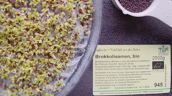 Brokkoli-Sprossen © Copyright by Karl-Heinz Hänel